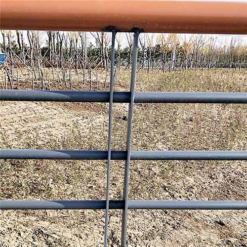 景观护栏应用案例